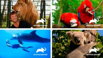 animal-planet-foto0