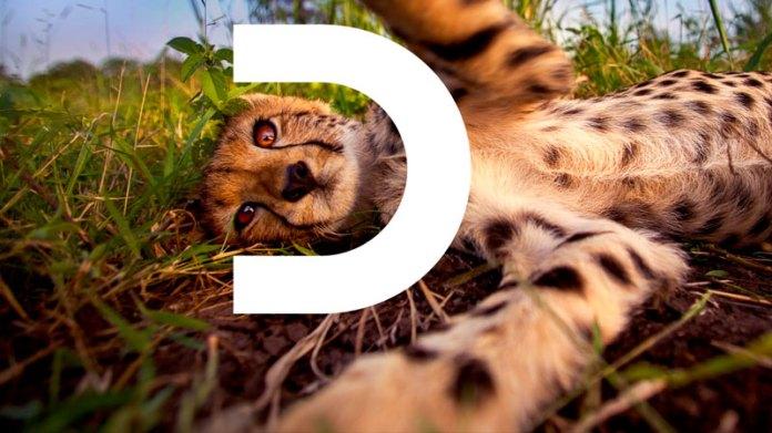 Discovery channel lanza una nueva identidad visual y eslogan para reforzar su presencia global