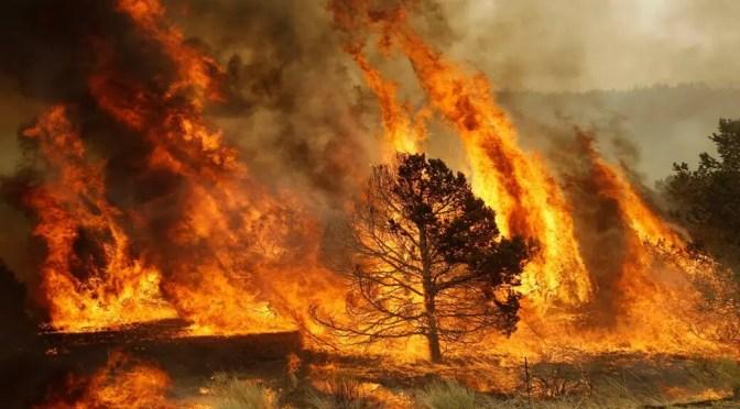 Incendio y crisis agraria