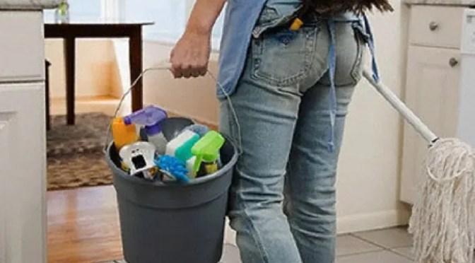 ¿Es el trabajo doméstico no remunerado?: de cómo una premisa falsa conduce a una posición reaccionaria