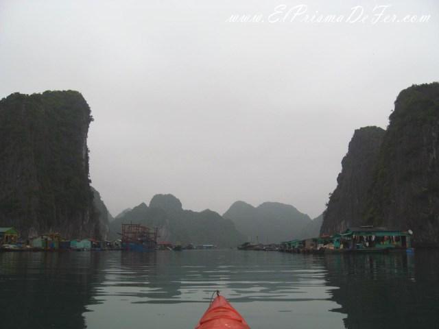 Vista desde mi kayak
