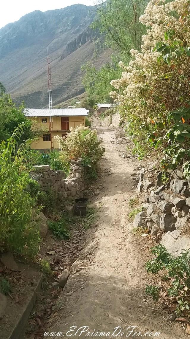 Camino entre los poblados Cosñinhua y Malate