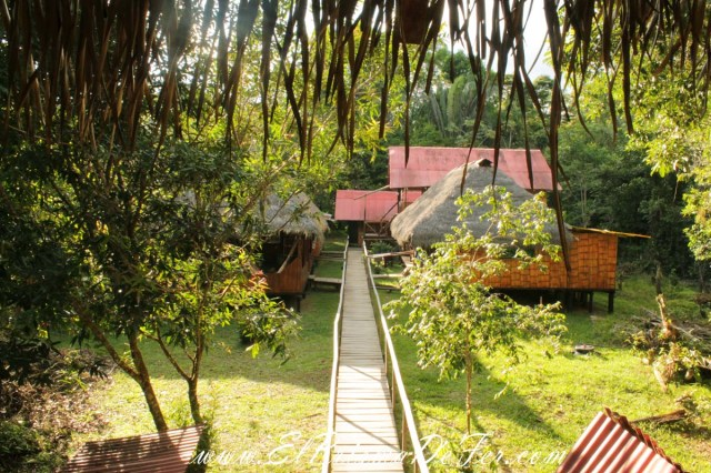 Cuyabeno Dolphin Lodge
