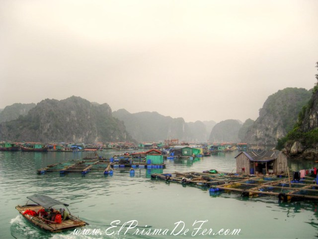 Aldea de Pescadores en Cat Ba, Halong Bay