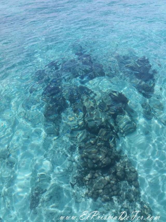 Aguas cristalinas de las Islas del Rosario