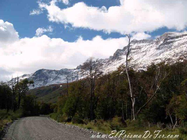 A medio camino el paisaje cambia por un entorno mas boscoso