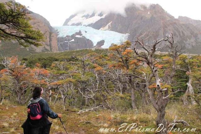 Mirador al Glaciar Piedras Blancas en el Chaltén
