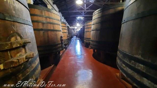 Barriles llenos de vino añejándose