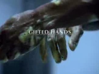 manos milagrosas, pelicula