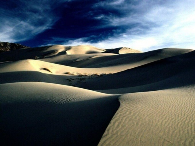 desierto, apetito pervertido, palabra de Dios, bosquejo