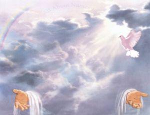 Dios supremo, cielo, Jesús, Jesucristo, Cristo, Espiritu Santo, Trinidad, milagro