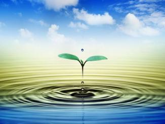 agua, vida, planta, Dios
