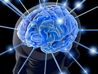cerebro, inteligente, inteligencia