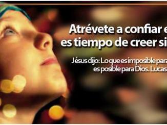 frases biblicas, creación