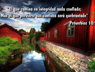 frases, integridad, proverbios