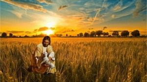 ensayo, amor, Dios, oveja perdida, reacción