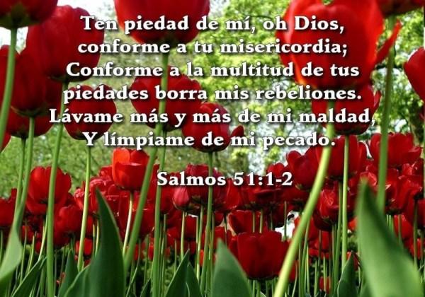 misericordia, bosquejo, salmos