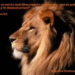 frases cristianas, facebook, citas biblicas, leon