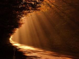 sabiduría, ensayo, proverbios