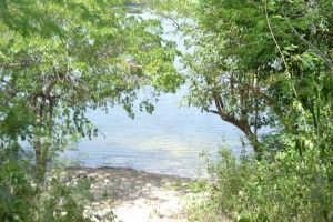 Laguna kana (1)