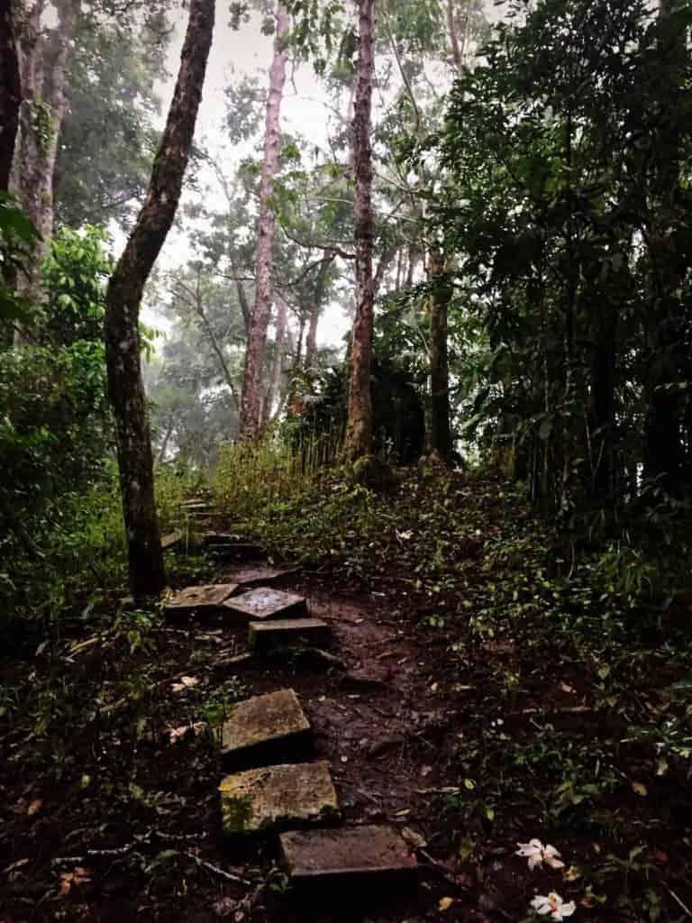 Siquijor typhoon