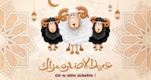 موعد عيد الاضحى ٢٠٢١ السعوديه موعد عيد الأضحى 2021 في الكويت موعد عيد الأضحى المبارك 2021 البحرين موعد عيد الاضحى في قطر 2021 موعد يوم عيد الأضحى 2021 الامارات تاريخ عيد الأضحى 2021 عمان