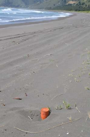 3. El madero naranjo es la marca del límite de una parcela. En la imagen se aprecia la extrema cercanía con el mar.