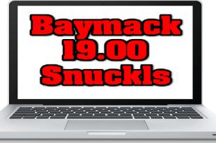 Pagos de Baymack y Snuckls