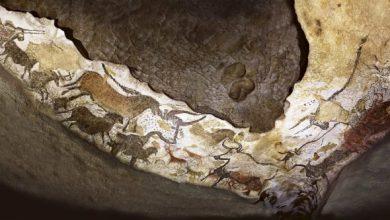 Photo of Sala de los Toros de la cueva de Lascaux en Francia