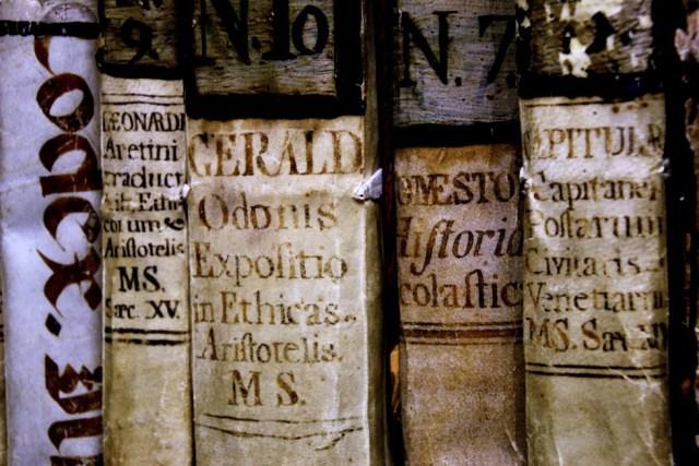 Algunos volúmenes de la Biblioteca [Foto: Carmen S. Cantos]