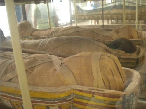 Momias Egipcias Turin