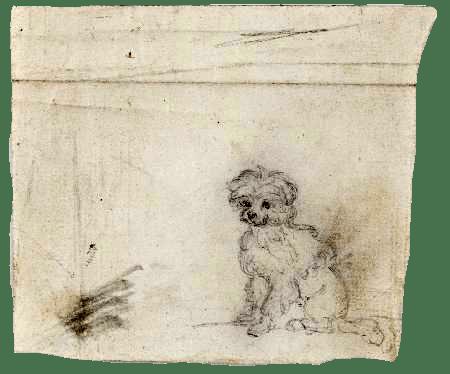 Aprender dibujar Rosario Weiss perro siglo XIX