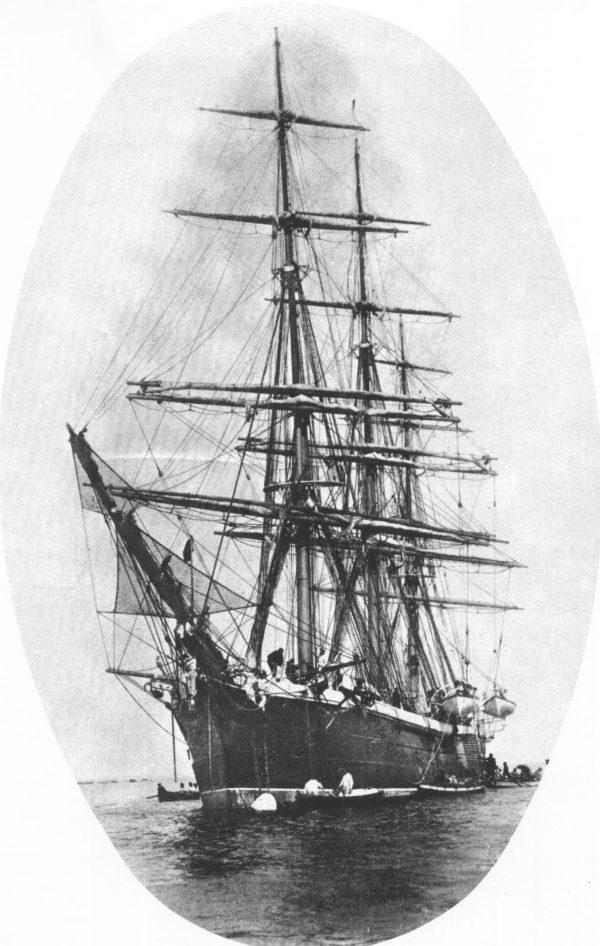 corbeta nautilus