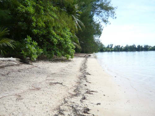 playa peleliu