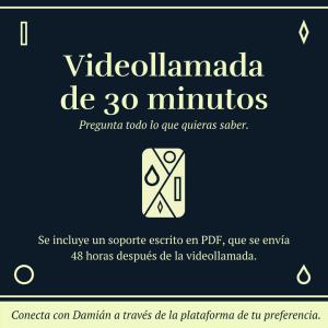 Videollamada 30 minutos
