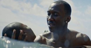 Diamond Films anuncia fechas de estreno de 'Lion' y 'Moonlight'
