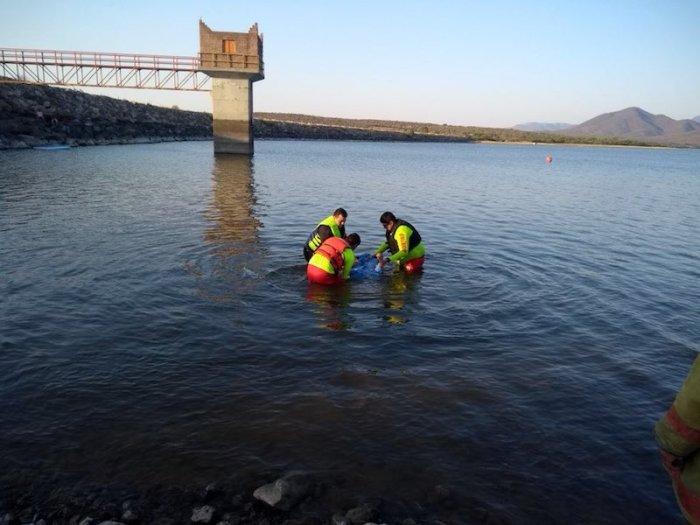 Tres personas se ahogaron en la Presa La Sauceda en Lagos de Moreno. Foto: Cortesía