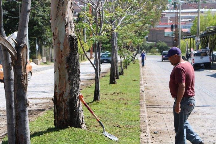 Avenida Valle de Otumba Lagos de Moreno
