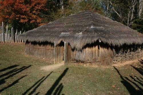 The Order Tribal Turn 12 Elrosth Wiki
