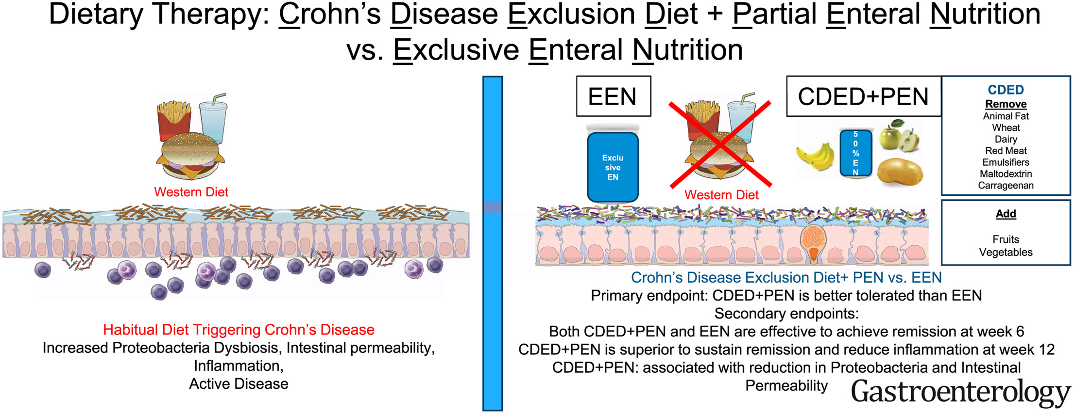 Crohn S Disease Exclusiont Plus Partial Enteral