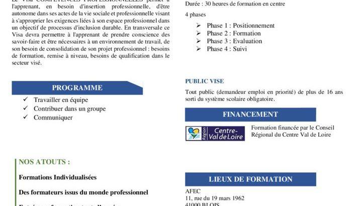 thumbnail of fiche competences pro 19