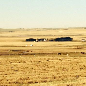 The beautiful Prairies that we had to leave behind