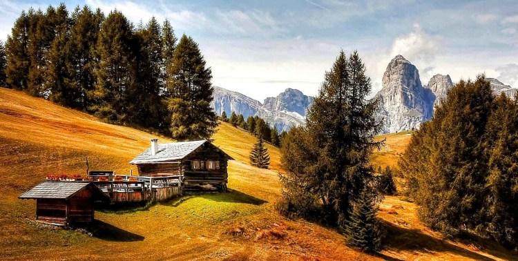 adventure alm cabin chalet