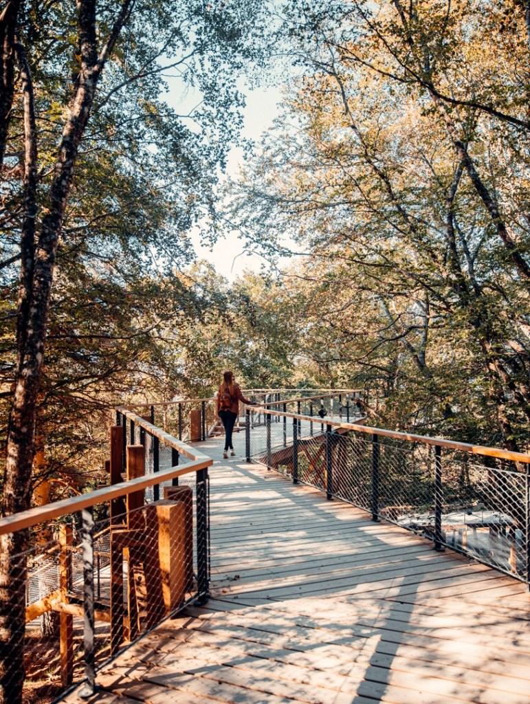 parcours-parc-du-gevaudan-lozere