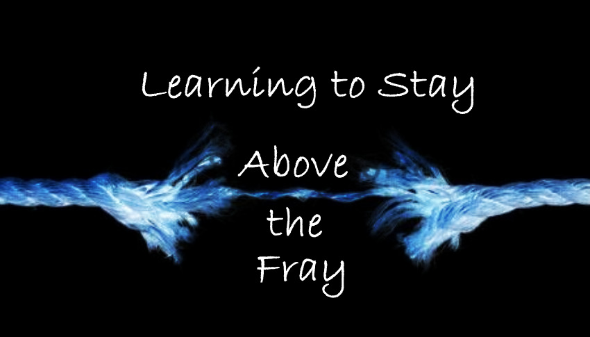 Learning To Stay Above The Fray  (An Open Letter)