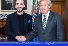 Secretario General de la OEA resalta Gobierno del presidente Bukele por la voluntad de cambiar a El Salvador