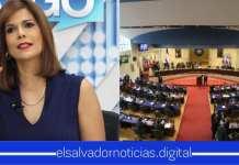 """Milena Mayorga : """"Es lamentable que la Asamblea Legislativa es la segunda sucursal de la fábrica de empleo"""""""