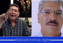 """Walter Araujo dice: """"No te Queda bien el Papel de Víctima Tacuazín Peinado, Chabacan, Sinvergüenza..."""""""