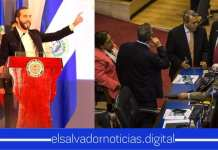 """Presidente Bukele: """"Dejen a los políticos hacer política, sí pero no vamos a dejar que los salvadoreños sigan muriendo"""""""