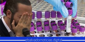 Un total de 512 pruebas de COVID-19 fueron realizadas y solo 1 persona salió positiva con el virus